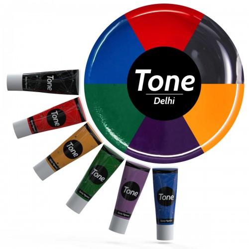 Tone Delhi Epoksi Pigment Seti 6x25 ml